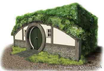 Help Carr Junior School's dream of a 'hobbit library' come true