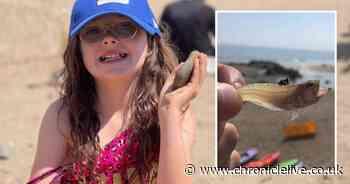 Girl stung by venomous fish while paddling at Yorkshire beach