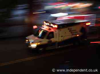 Woman crashes stolen ambulance in New York bay, police say