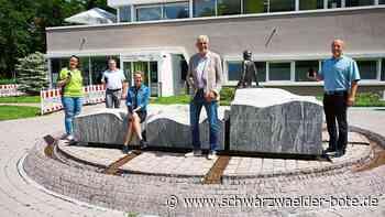 System freigeschalten - Digitaler Impfpass startet in Bad Liebenzell - Schwarzwälder Bote