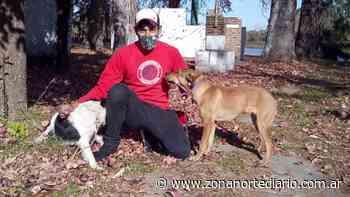Zoonosis de San Fernando continúa realizando operativos en el Delta para la atención de mascotas - Zona Norte Diario Online