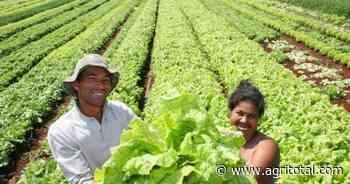 San Luis: reclaman ley provincial que articule la protección a la Agricultura Familiar - AgriTotal