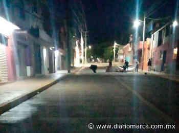 Reinician cierre en calle de Santa Lucía del Camino - Diario Marca de Oaxaca
