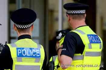 Alleged assault involving five females and one male in York