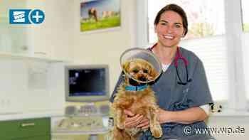 Tierärztin in Eslohe: Von der Klinik zurück ins Sauerland - WP News