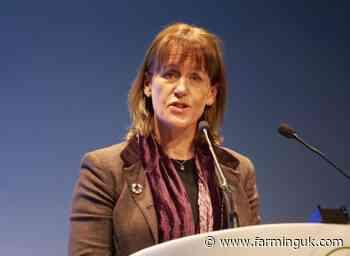 UK-Australia deal: No mention of standards, NFU says