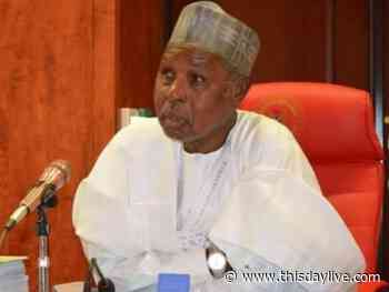 Enrolment of Primary School Pupils Hits 1.8m in Katsina, Says Masari - THISDAY Newspapers