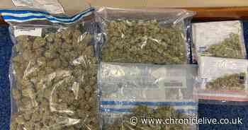 Police discover £5,000 worth of cannabis in early morning raid