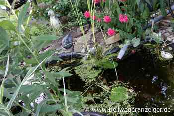 Gartenidylle in Holzwickede - Hellweger Anzeiger