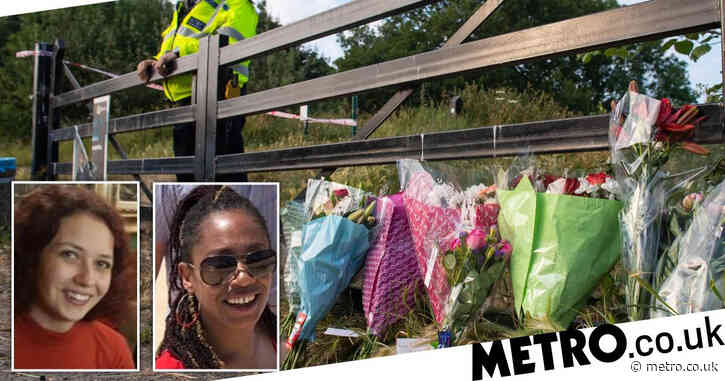 'Piercing scream' heard as two sisters brutally stabbed to death in park