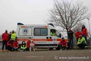 Mogliano Veneto, ambulanza veterinaria: attivo il nuovo servizio - La PiazzaWeb - La Piazza