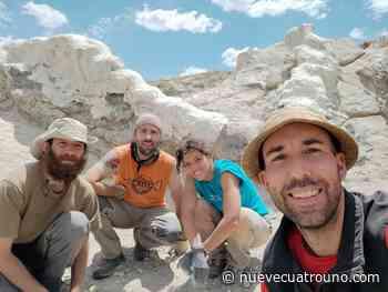 Un rinconero descubre la columna de un dinosaurio en Teruel - NueveCuatroUno