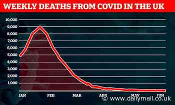 Weekly Covid deaths plunge to ANOTHER low with just 52 victims in first week of June