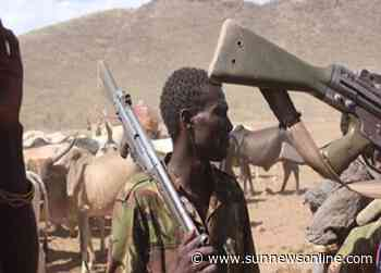 One killed, another injured as herders attack community in Ikot Ekpene – The Sun Nigeria - Daily Sun