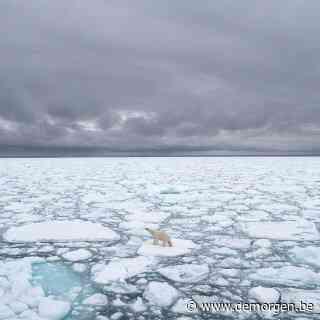 Arctische expeditie: 'Kantelpunt onomkeerbare opwarming aarde wellicht al voorbij'