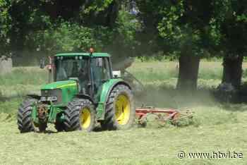 Boeren halen hun hooi vroeger binnen dankzij goed hooiweer - Het Belang van Limburg