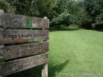 Kings Langley residents encouraged to share their views on Neighbourhood Plan - Hemel Today