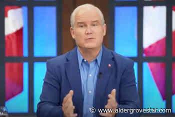Conservative leader talks tourism, trade, SkyTrain with Langley Chamber – Aldergrove Star - Aldergrove Star