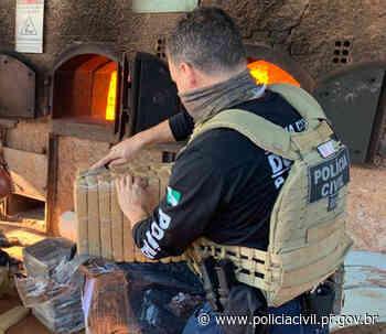 PCPR incinera 2 toneladas de maconha em Santa Terezinha do Itaipu - Polícia Civil do Paraná