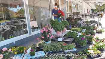 Gärtnern in Blumberg - Corona steigert die Gartenlust - Schwarzwälder Bote