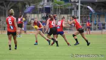 Karratha Falcons edge out Hedland Blazers, Karratha Kats maul Dampier Sharks - The West Australian