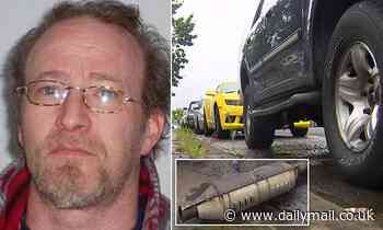 'Killer shoots catalytic converter thief and drags him behind truck'