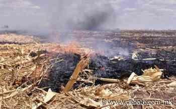 Exhorta la JLSVVE a erradicar la quema de soca en el municipio de Angostura - Debate