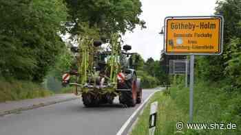 Fleckeby: So kann Götheby-Holm Energie einsparen und klimafreundlicher werden | shz.de - shz.de