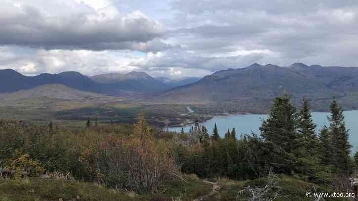 Injured campers paddle 6 miles to safety after bear mauling near Skilak Lake