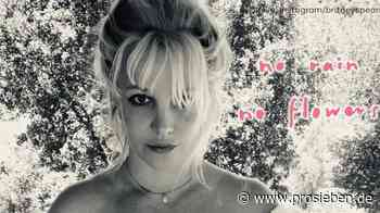 """""""Kein Regen, keine Blumen"""": Was will Britney Spears damit sagen? - ProSieben"""