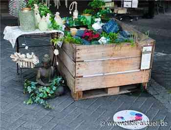 Pop-Up-Gärten, Blumen und bunte Sitzmöbel wirken einladend - Blick aktuell