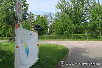 Na dodelijk ongeval Loes: nog deze zomer zebrapad op Horstebaan