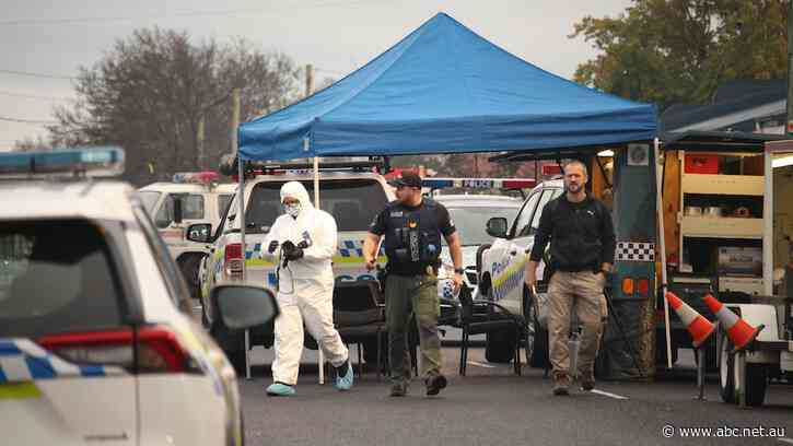 'Prowler' arrested after allegedly stabbing NSW woman to death in Ulverstone - ABC News