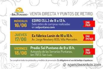 Sol Puntano dio a conocer sus puntos de retiro y venta directa para esta semana - Agencia de Noticias San Luis