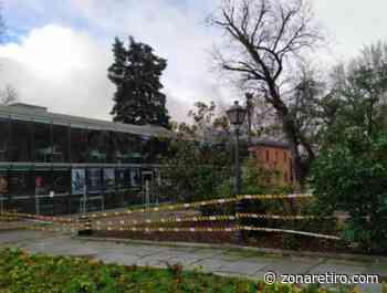 La biblioteca del Parque del Retiro abre a las 10.00 horas tras la alerta roja - zonaretiro.com
