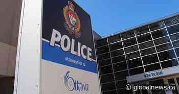 Ottawa police investigating deaths of 4 cats in west end