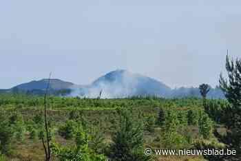 Brandje op militair domein op grens Helchteren en Meeuwen: schade beperkt tot 1 hectare