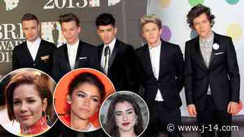 Celebs Who Are One Direction Fans: Halsey, Miley Cyrus, More - J-14