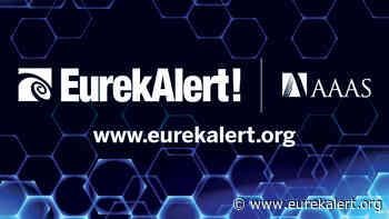 New combination of materials provides progress toward quantum computing - EurekAlert