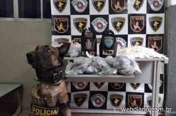 Polícia apreende mais de 4 mil porções de drogas em Osasco - WebDiario