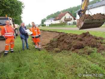 Artenvielfalt: Steinheim legt weitere Blühstreifen an - Heidenheimer Zeitung