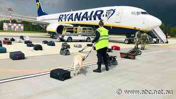 Ryanair boss says pilot had no choice but to land in Belarus after 'credible' bomb threat