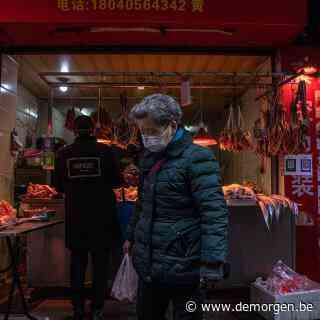 Onverwacht opgedoken lijst bewijst: veel meer wildhandel in Wuhan dan bekend toen corona er uitbrak