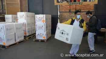 La pregunta de millones: qué ingredientes contienen las vacunas contra el coronavirus - La Capital (Rosario)