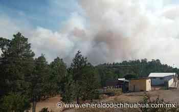 [Video] Fuera de control incendio forestal en Guadalupe y Calvo - El Heraldo de Chihuahua