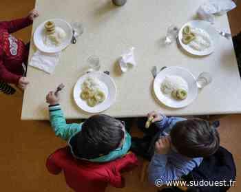 Mios : changement de restauration scolaire à la rentrée - Sud Ouest