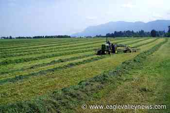 COVID-19: BC waives farm income requirement for a second year – Sicamous Eagle Valley News - Eagle Valley News