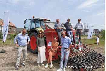 Veld vol henneplanten in afwachting van nieuwbouwproject: ni... (Vilvoorde) - Het Nieuwsblad