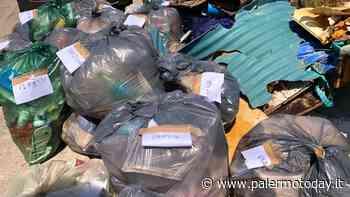 Carini, volontari ripuliscono tratto di litorale: in un'ora riempiti 20 sacchi - PalermoToday