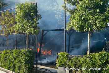Tuinhuis met buitenkeuken gaat volledig in vlammen op - Het Nieuwsblad